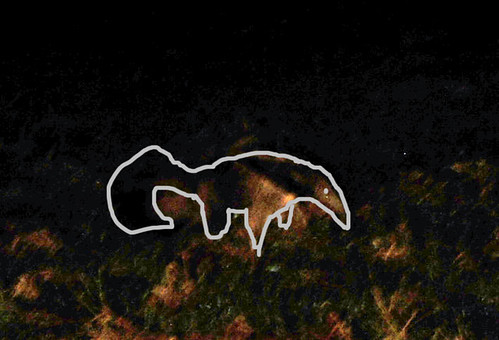 giant anteater outlined