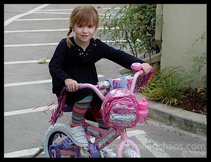 em_bike_2.jpg