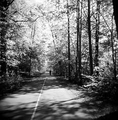 Filtered Thoughts (Holga-Jen) Tags: park trees light blackandwhite bw sun sunlight white ontario black london 120 film forest mediumformat river square holga kodak path walk toycamera vignette bw400cn