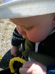 Undersöker en leksak