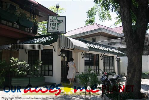 Corner Tree House-1