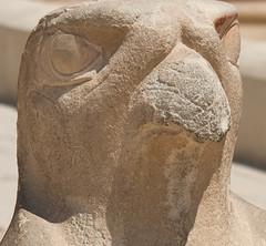 hatshepsut-17 (fessell810) Tags: temple egypt falcon horus har deirelbahri heru djeserdjeseru