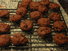Chewy Chocolate Blueberry Cookies