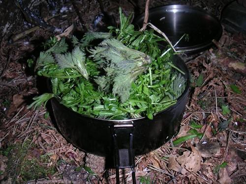 small-mixed-green-stew-pre-midhurst