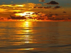 South Pacific Sunset - Oceania (S@ilor) Tags: ocean new sunset newzealand pacific zealand southpacific panama 1001nights mignon oceania mywinners silor thesuperbmasterpiece southpacificsunset 1001nightsmagiccity southpacificoceansunset oceaniasunset