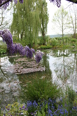 Lily pond, Giverny, May 2010 (GayleNL73) Tags: garden giverny lilypond monets
