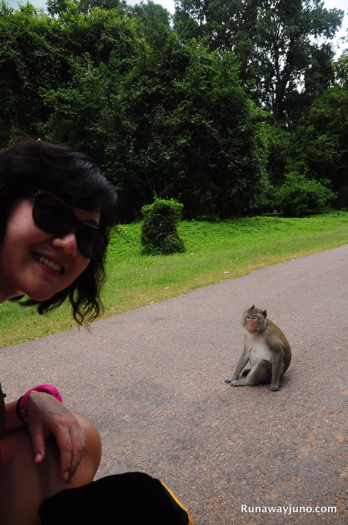With an awesome monkey on the street