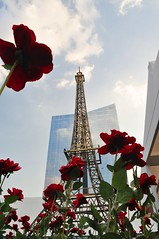 Torre Eiffel Paulistana (Digenes Arajo) Tags: brazil brasil torre sopaulo sp torreeiffel rosas rplica contramergulho shoppingjkiguatemi