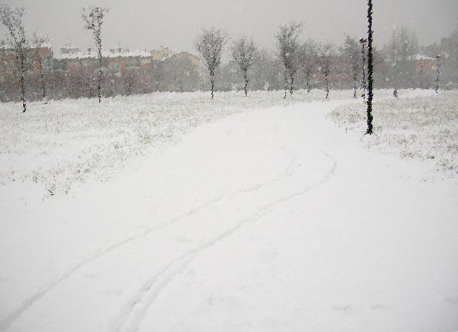 scia lasciata sulla neve