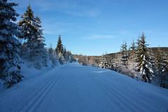 IMG_4340a (majena) Tags: winter snow mountains czechy