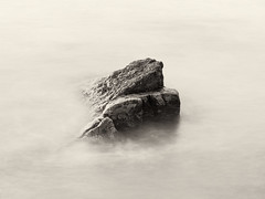 Rock, Gullane Point (jamalrob) Tags: rocks olympus east forth shore zuiko gullane lothian firth aberlady e510 1260