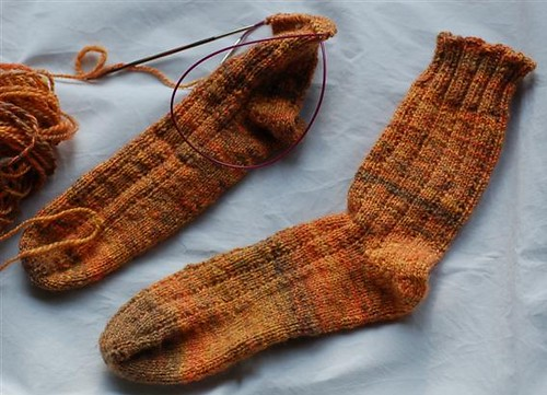 Calendulas socks in process