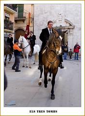 Els tres tombs 58 (ferran pestaa) Tags: barcelona spain catalonia tradici culturapopular galope vilanovailageltr santantoniabad elstrestombs