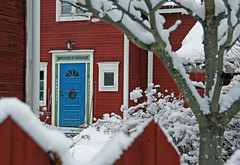 The blue door with flowers (tienna) Tags: door blue red snow sn bl rd drr grannen