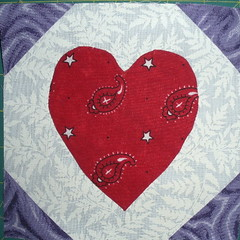 Heart in a Snowball Block