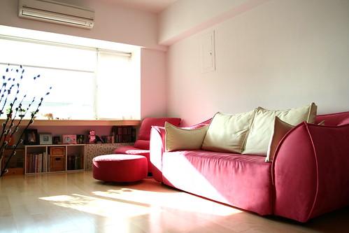 傳說中的粉紅沙發