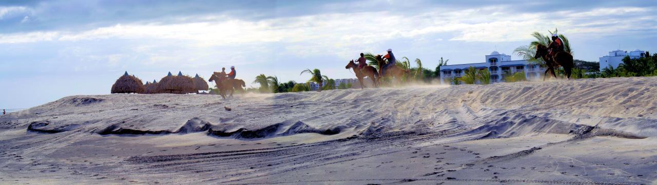 Caballos Playa