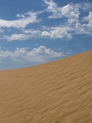 1Feb 198 (cecilia soledad) Tags: costa playas sudamerica latinomerica