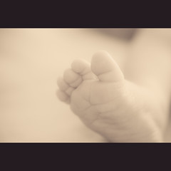 F O O T (manganite) Tags: boy portrait people baby monochrome closeup sepia digital germany geotagged foot kid interestingness nikon europe toes soft bonn dof child bokeh tl framed son monotone explore newborn d200 nikkor dslr toned day27 leander 50mmf18 northrhinewestphalia takuma interestingness344 i500 utatafeature manganite gluckstrase  date:month=february date:day=28  date:year=2009 leandertakuma  geo:lat=50733235 geo:lon=7090249 format:ratio=32 familygetty2010
