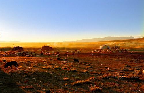 Paryang Nomads camp Tibet