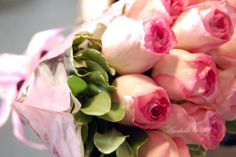 Rosas para  la 1ra. Dama de Colombia