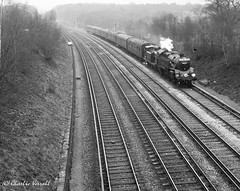 80084 and 473 BIRCH GROVE Copyhold Junction with The 'Spring Belle' Bluebell railway special 31 March 1963 (pondhopper1) Tags: blackandwhite white black steam railways e4 bluebellrailway uksteam
