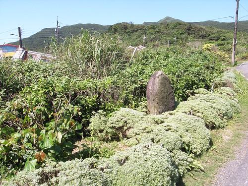 卯澳社區,有整理的花草