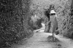 runaway (francesca-jane) Tags: road travel hat allen francesca frenchie runaway suitcase alida frenchiejane