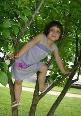 Tree Girl