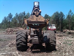 CAT 525B Skidder with Winch in NC 02 (Jesse Sewell) Tags: cat forsale forestry logging 360 caterpillar 525 winch 630 deere 660 grapple 545 620 catarpillar 560 tigercat 460 timberjack 848 catrpiller 648h singlearch 525b 360c 450c 560c 610c 660c 620c catrpillar 540h 640g 535b 460c 525c wwwskidderzonecom skidderzone 518c 540g dualarch 535c wwwjessesewellwordpresscom wwwyoutubecomuserskidderzone wwwflickrcomphotosskidderzone 545c 648g 748g 548g 548g2 548gii 540g2 540gii 540giii 548g3 540g3 640g2 640gii 640giii 640g3 640h 548h 748h 848h 848g3 848giii 848g2 648gii 630c 630d e620c