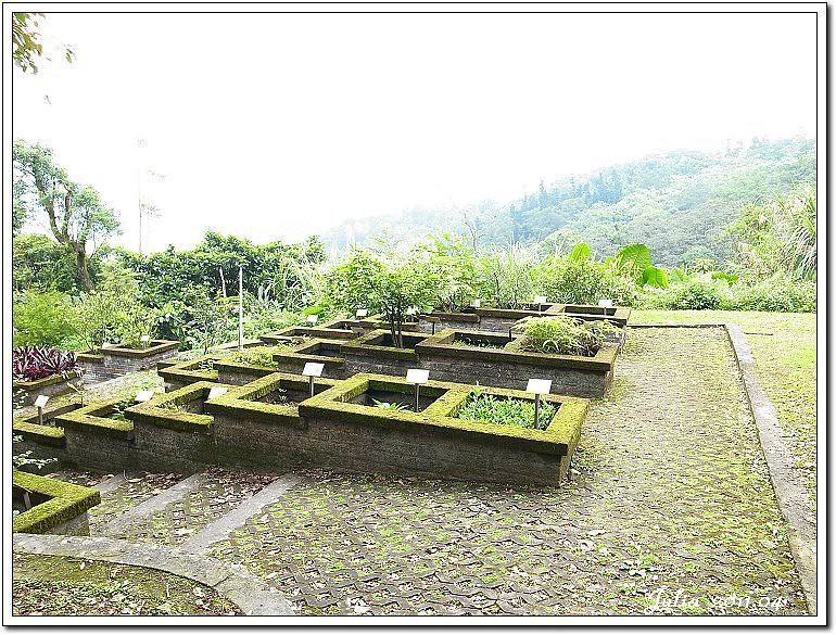 仁山植物園 (17)