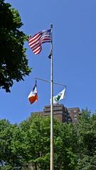 Corlears Hook Flags (Joel Raskin) Tags: nyc newyorkcity les lowereastside parks flags lumixlx5