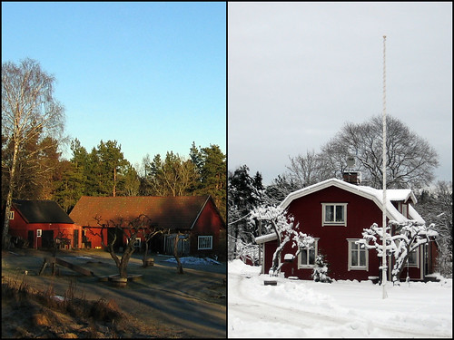 Winter vs. Winter