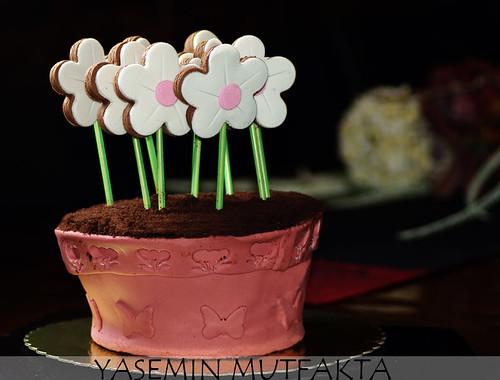 Saksıda Çiçekler Pastası