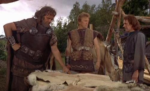 viking 12 por ti.