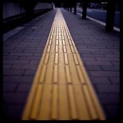 Following the blind (gullevek) Tags: 6x6 film yellow japan geotagged iso100 tokyo blind kodak bokeh pavement line    rolleiflex28c epsongtx900 blindline kodakektachromeepn100 geo:lat=35651423 geo:lon=139755189