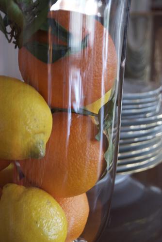 oranges1182