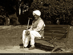 Where have you gone... I miss you so much... (exploring myself..) Tags: park old man garden bench photography waiting sitting lone lonely raman sharma