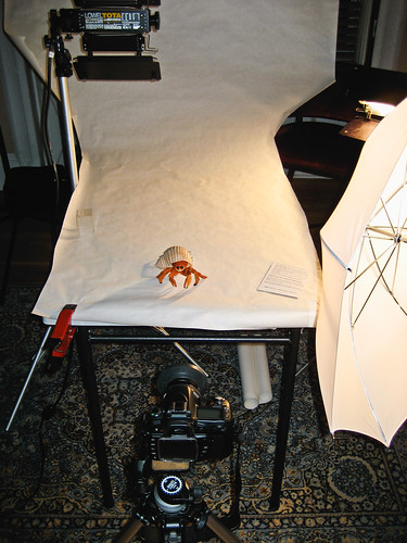 Behind the Scenes #3, Ghetto Photo Studio
