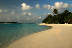 Paradise Beach (juliaclairejackson) Tags: ocean sun holiday seascape hot tree beach beautiful landscape island solitude paradise turquoise azure palm palmtree heat tropical idyll maldives idyllic tropics dreamscape meeru