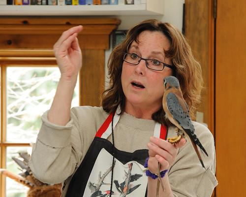 2009-03-28 Barnswallow - A Wild Bird Concern 8