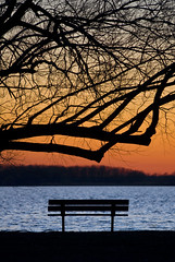 Time to take a Seat (Insight Imaging: John A Ryan Photography) Tags: longexposure sunset toronto ontario tree water night bench aficionados potofgold pentaxk10d wwwinsightimagingca johnaryanphotography