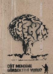 StreetArt, Istanbul, Turkey (balavenise) Tags: stencil pochoir cerveau brain bomb bombe champignon nucléaire streetart artdelarue artedecalle arteurbano arturbain urbanart tag graffiti publicspace art artist ephemere efemero artsauvage istanbul turquie turkey