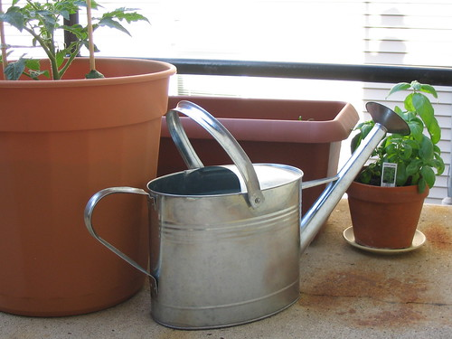 watering can and minigarden