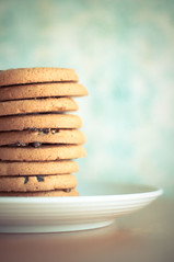 ~ a stack of yum. (CarolynsHope) Tags: food cookies yummy soft cookie yum plate stack eat snack simple chocolatechip stylish chocolatechips chocolatechipcookies