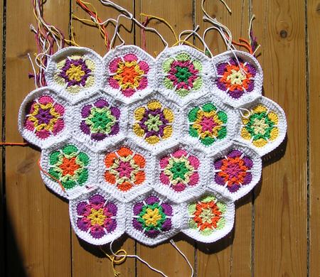 africanflower3