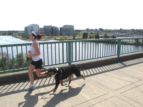 Jogger and dog running on Cambie Bridge with Olympic Village and westside as backdrop