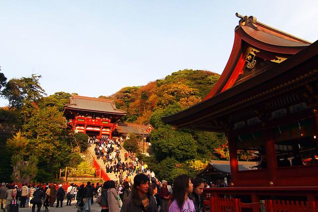 101128_145053_鎌倉_鶴岡八幡宮