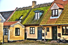 The living roof (OrangUtanSam) Tags: copenhagen denmark dragr moss algae thatchedroof oldtown thatching dragoer historictown mossgrown mossonroof orangutansam johansamsom dragoe