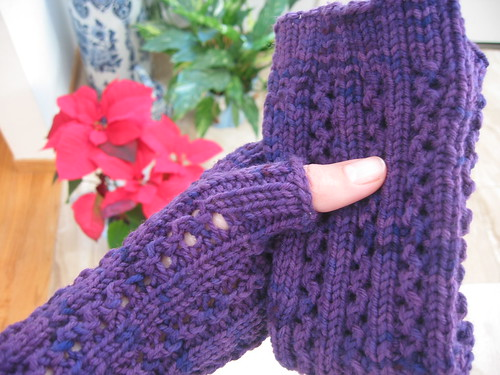 January Arm Warmers